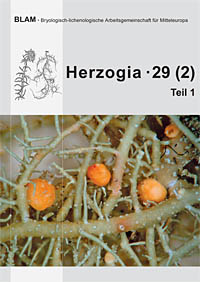 Cover of Herzogia 29 Vol 2 Part 1: Basidiomata of Biatoropsis hafellneri on the thallus of Usnea cornuta